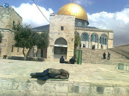 ערבי ישן בהר הבית