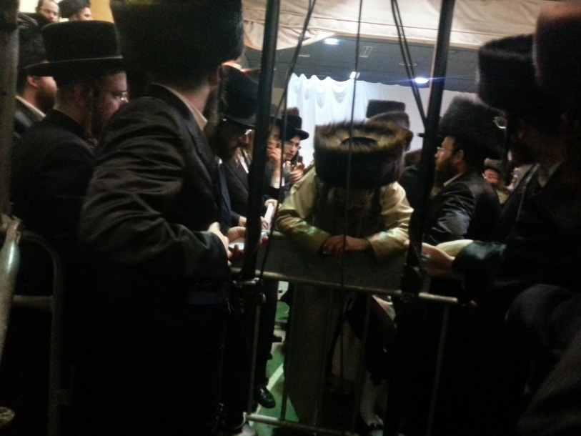 resized_רבי אלימלך בידרמן קורא קויטלעך 7
