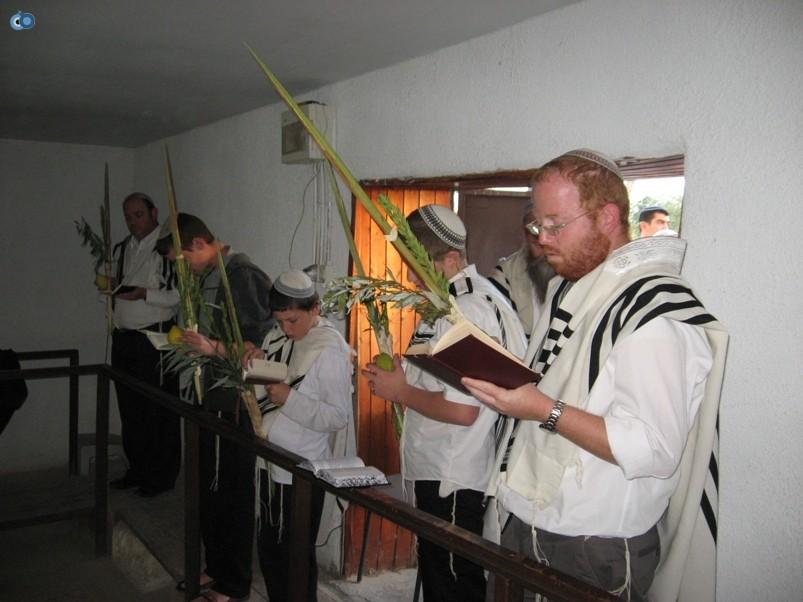 הושענות בשלום על ישראל ביריחו