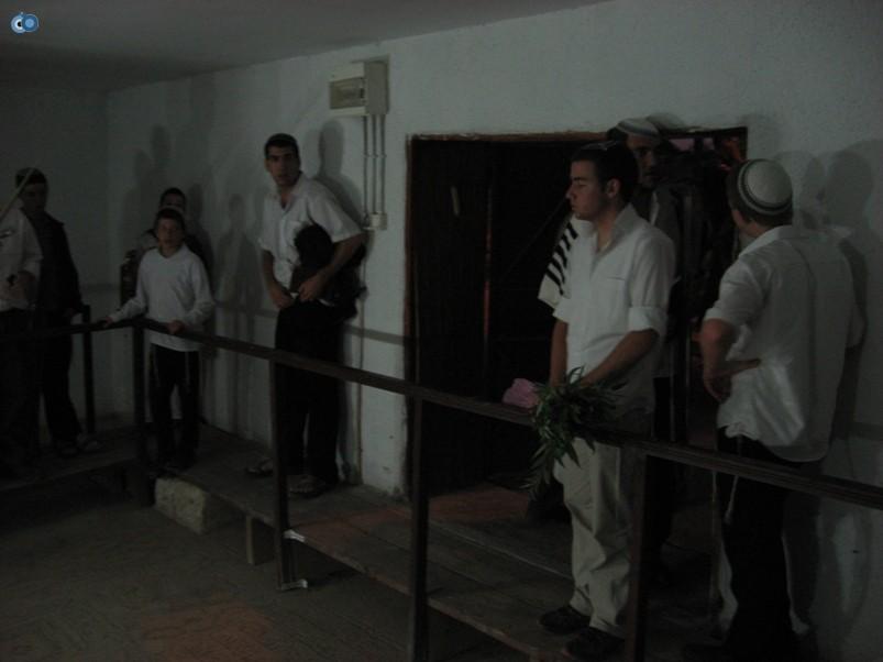 תפילה בשלום על ישראל ביריחו על הנץ
