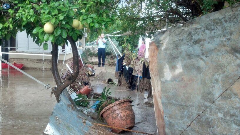 פצוע גשמים צילם חדשות 24 (4)