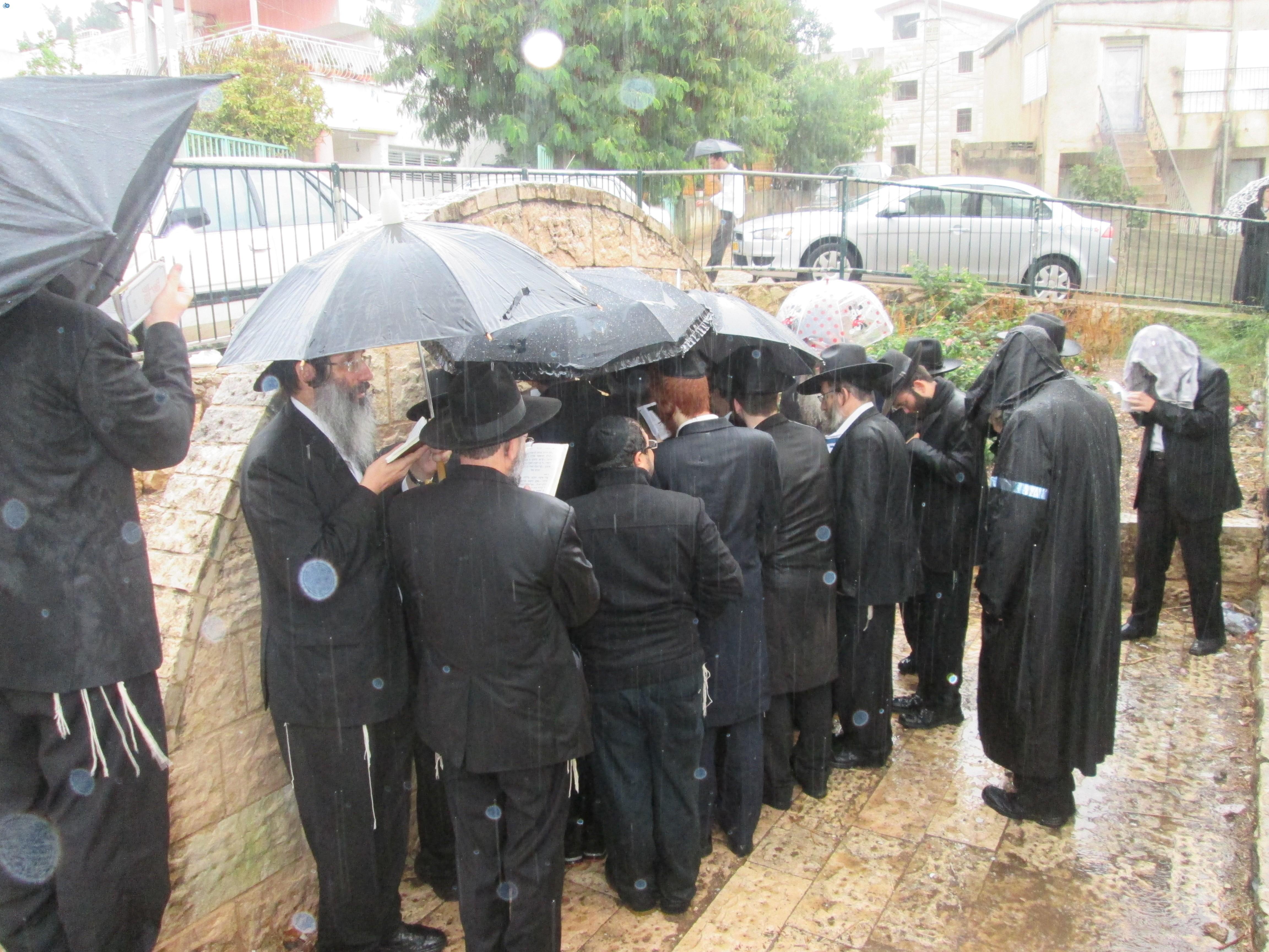 הרב מרדכי גרוס בתפילה (1)
