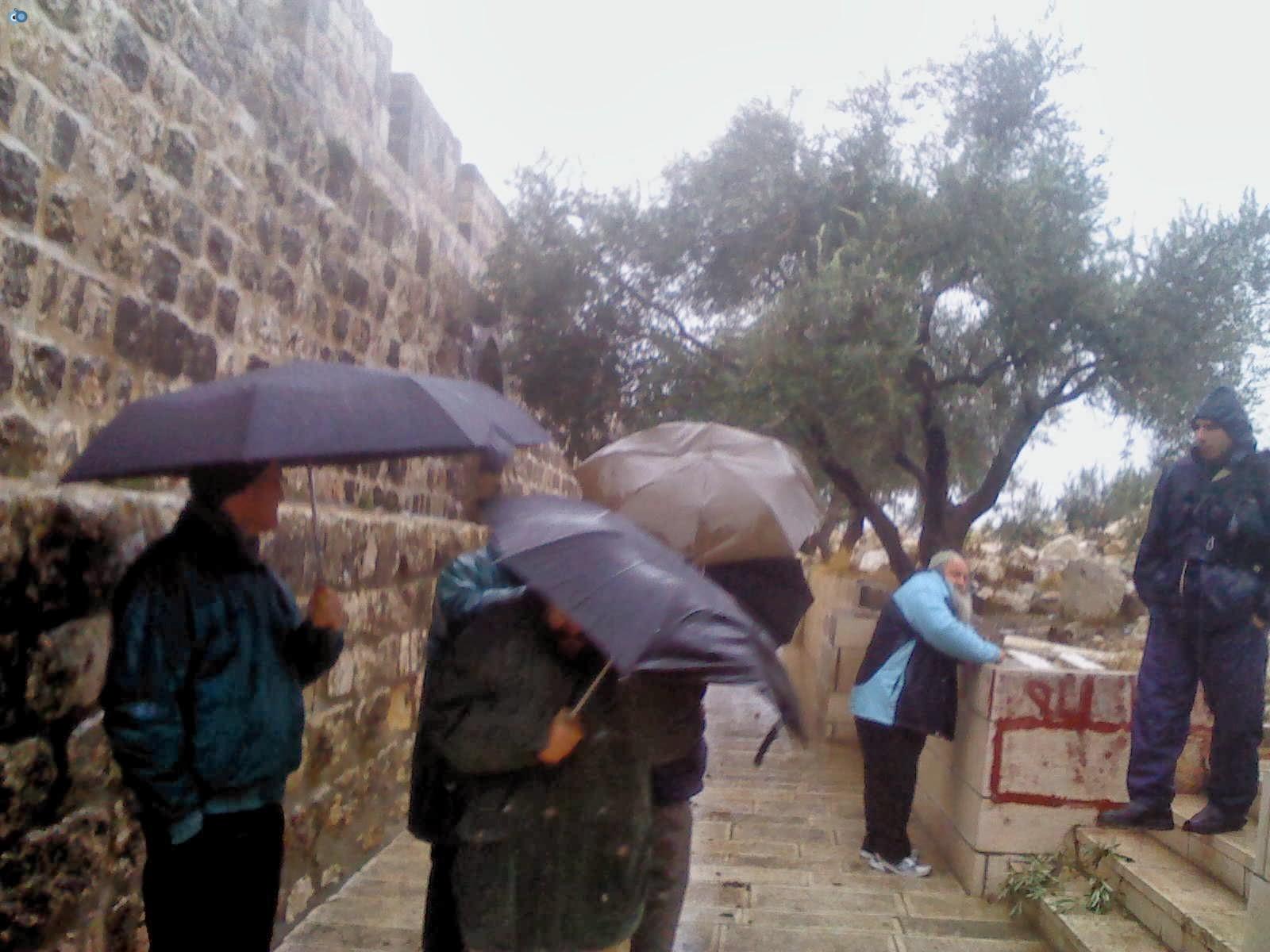 הר הבית גשם 3