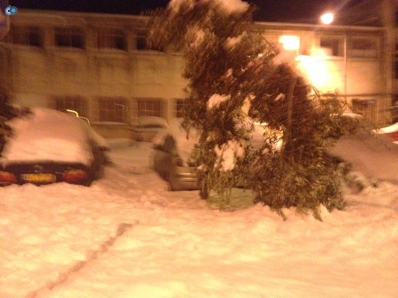 צפת   הצלה שלג צילם שמחה גולדברג 24  (10)