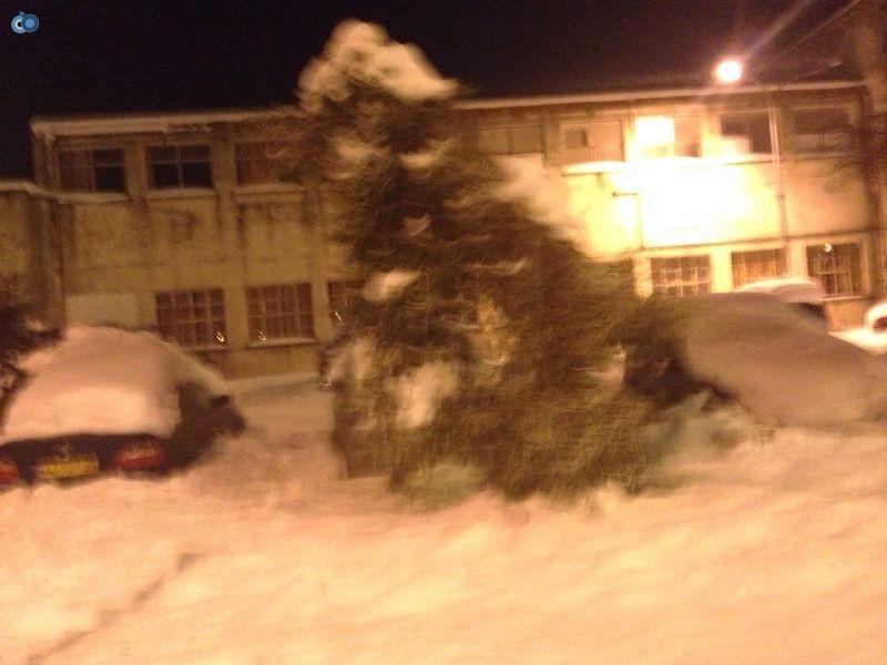 צפת   הצלה שלג צילם שמחה גולדברג 24  (11)