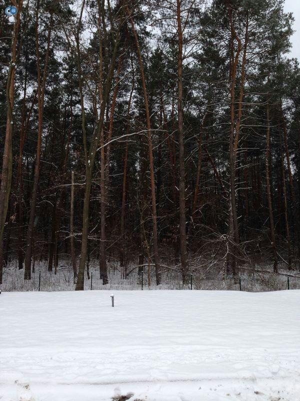 שלג באומן באוקריאנה- יוסף חי חדשות24 (3)