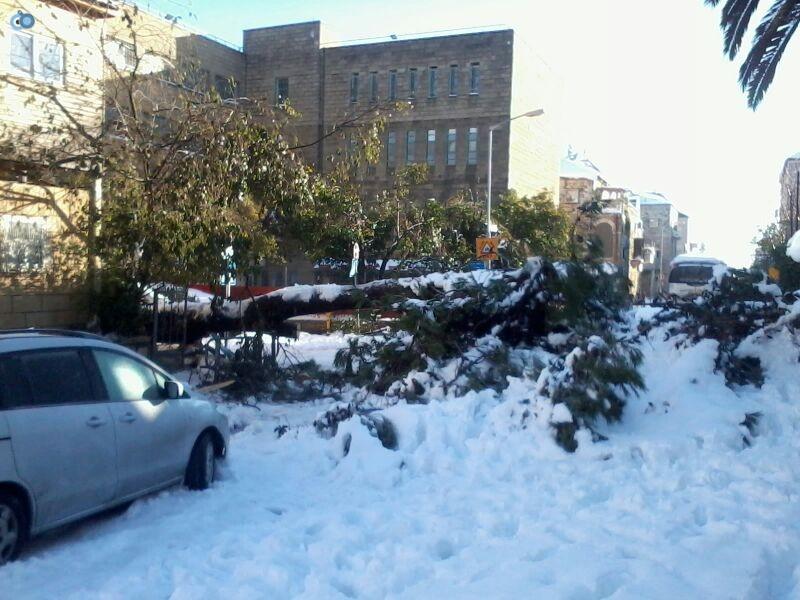 שלג בגאולה- שמואל בן ישי- חדשות 24 (1)