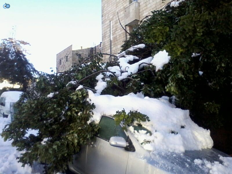 שלג בגאולה- שמואל בן ישי- חדשות 24 (10)