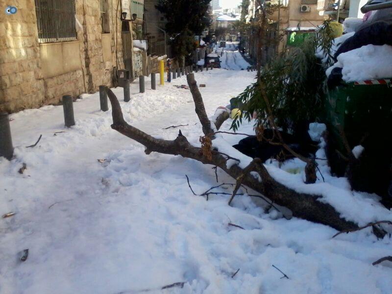 שלג בגאולה- שמואל בן ישי- חדשות 24 (2)