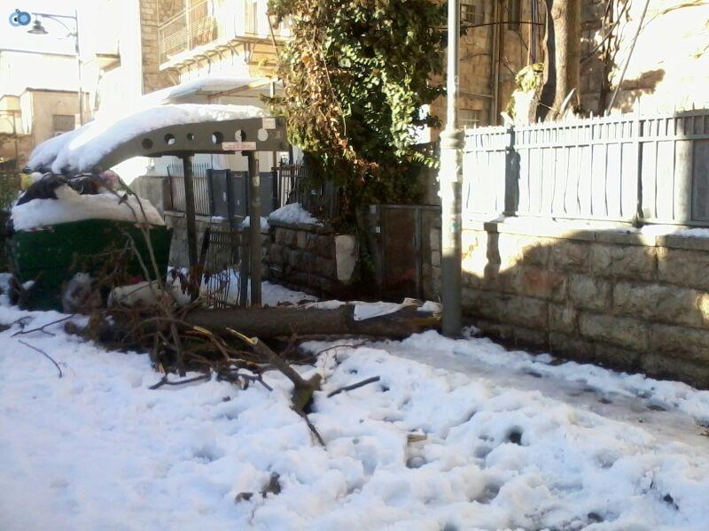 שלג בגאולה- שמואל בן ישי- חדשות 24 (4)