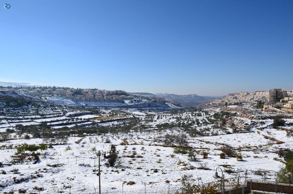 שלג   ביתר  צילם  יצחק  בצון (10)