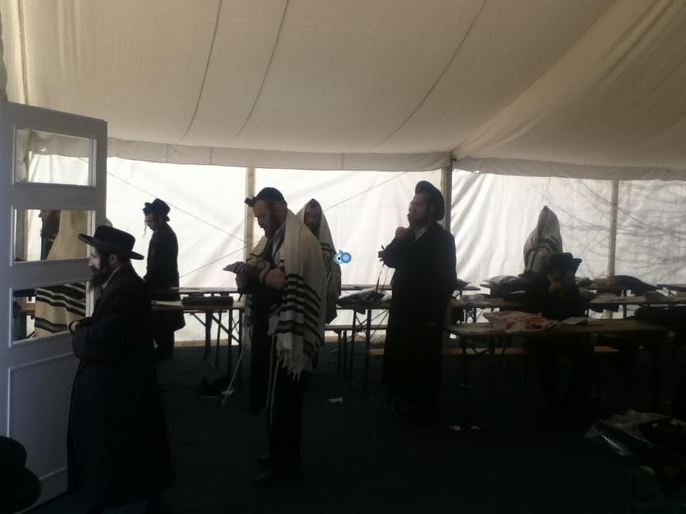 ליז'ענסק ליזענסק עליה לציון  צילום אליעזר סמט חדשות 24 (7)