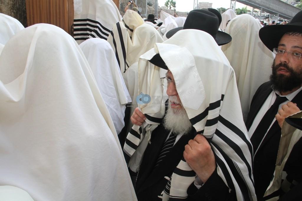 חכם שלום כהן סוכות תשע''ה צילם יעקב כהן (11)