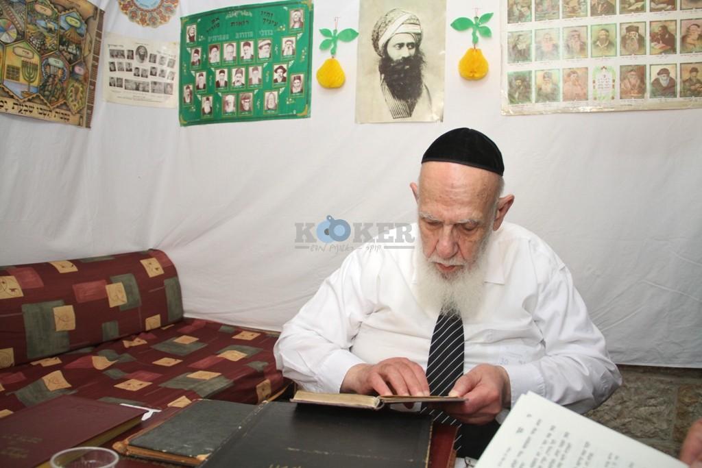 חכם שלום כהן סוכות תשע''ה צילם יעקב כהן (16)
