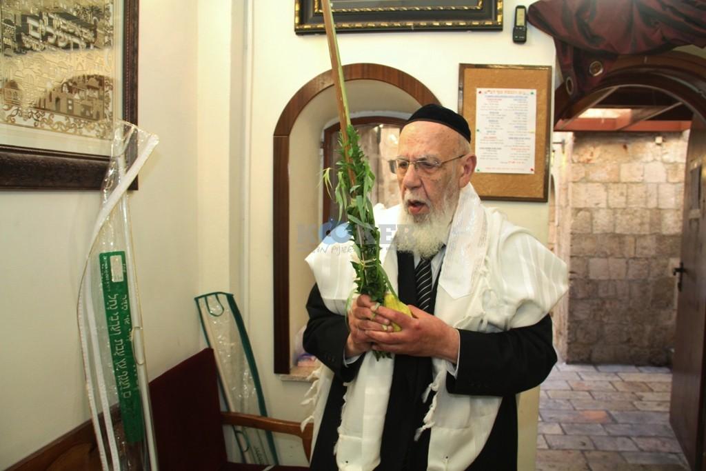 חכם שלום כהן סוכות תשע''ה צילם יעקב כהן (2)