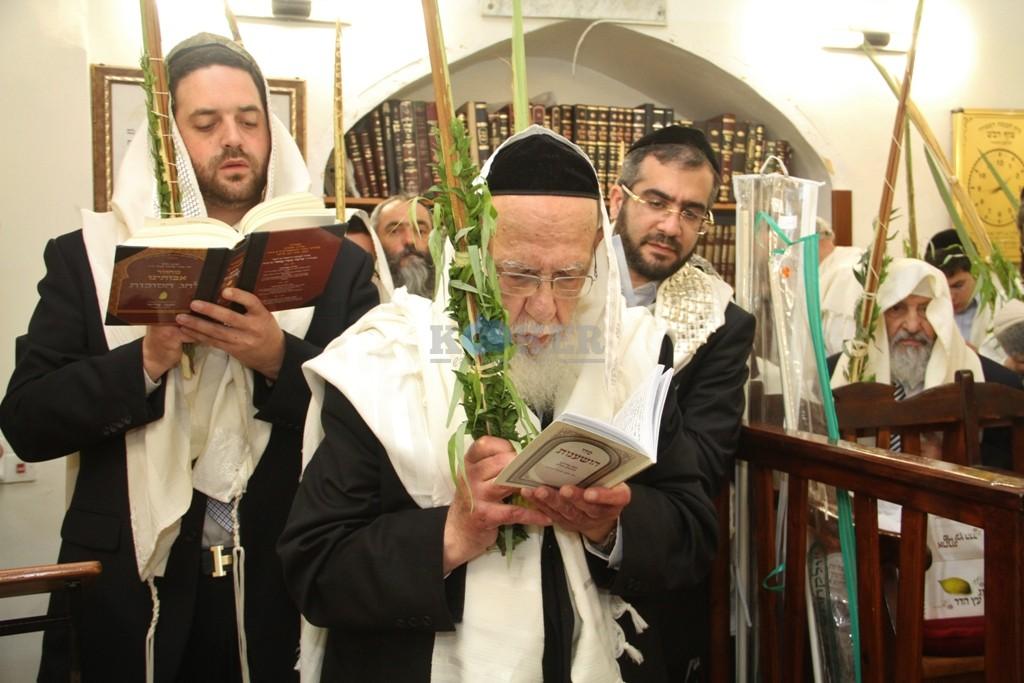 חכם שלום כהן סוכות תשע''ה צילם יעקב כהן (3)