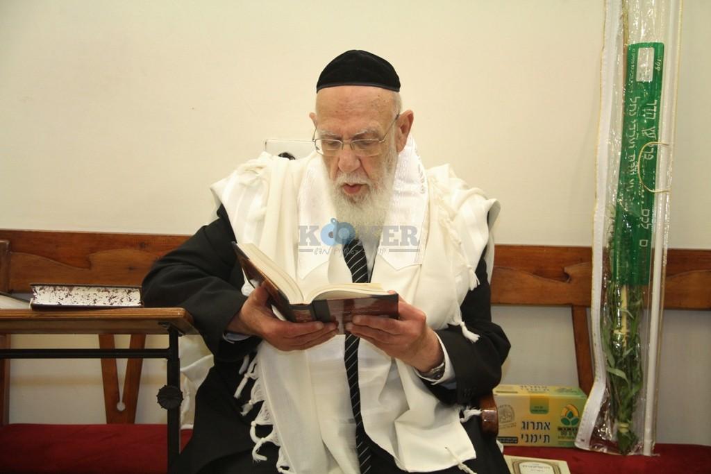 חכם שלום כהן סוכות תשע''ה צילם יעקב כהן (5)