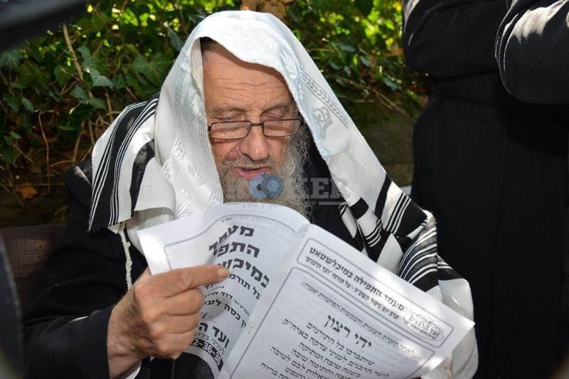 מיכלשטאט, רבי דוד שטרן צילם אלי סגל (9)