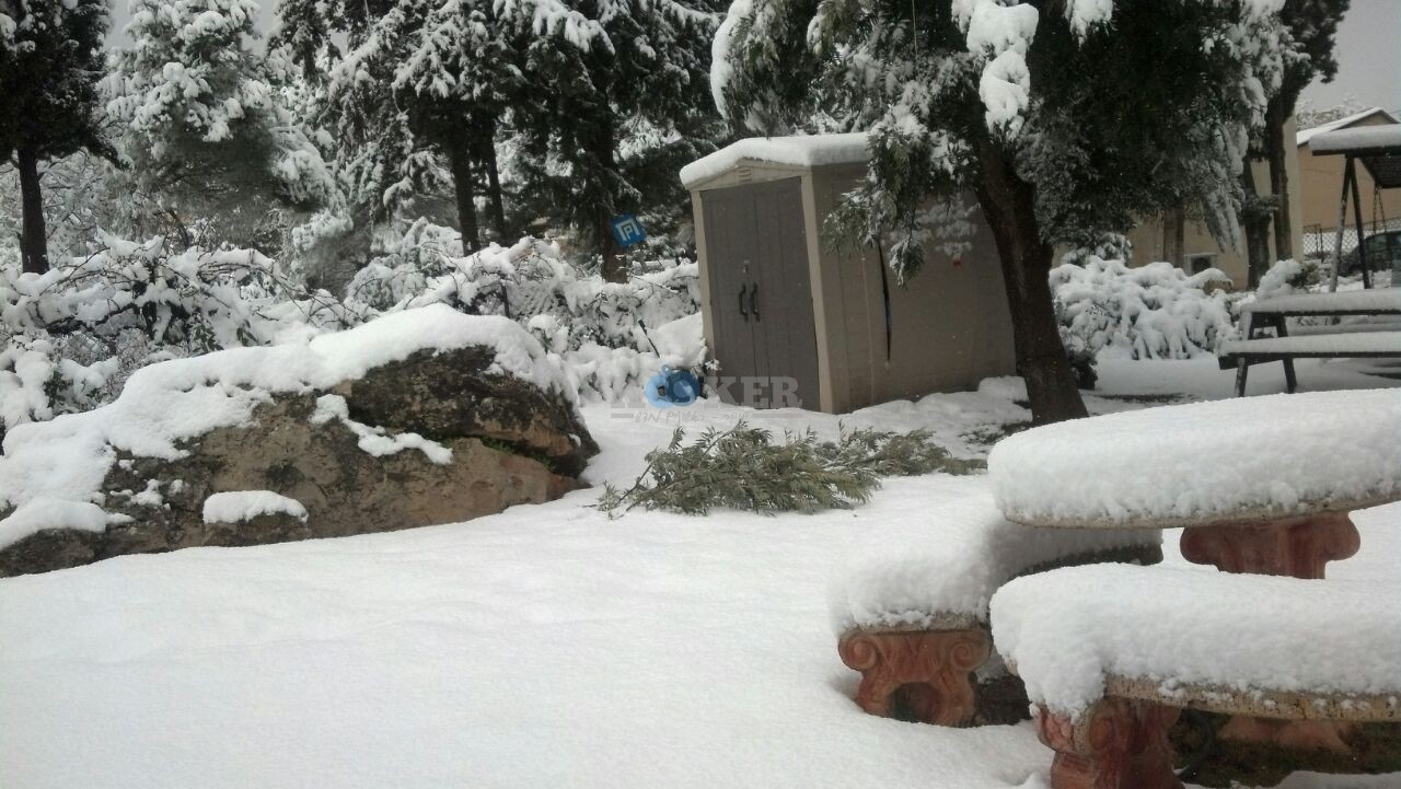 שלג במירון צילם דוברות חסדי שבתאי (12)