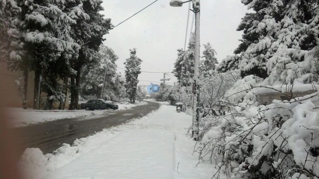 שלג במירון צילם דוברות חסדי שבתאי (2)