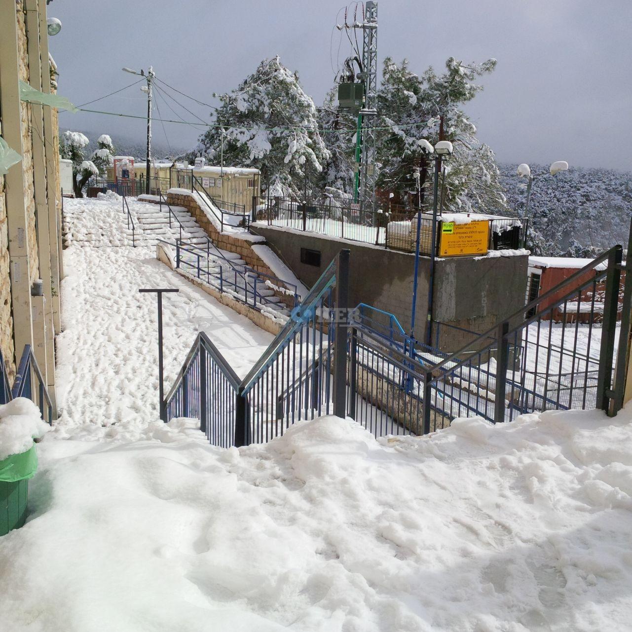 שלג במירון צילם דוברות חסדי שבתאי (5)