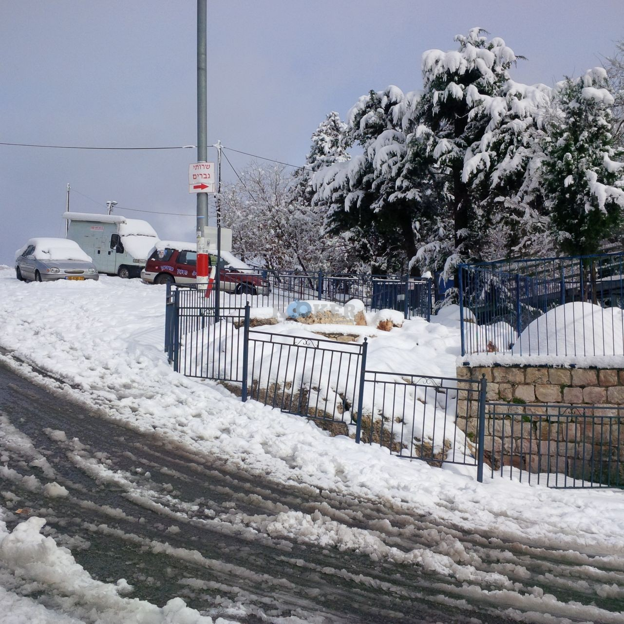 שלג במירון צילם דוברות חסדי שבתאי (6)