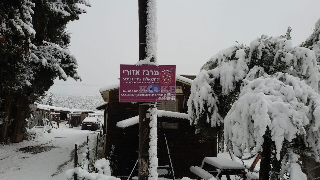 שלג במירון צילם דוברות חסדי שבתאי (7)