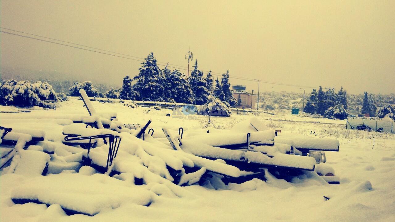 שלג במירון צילם דוברות חסדי שבתאי (8)